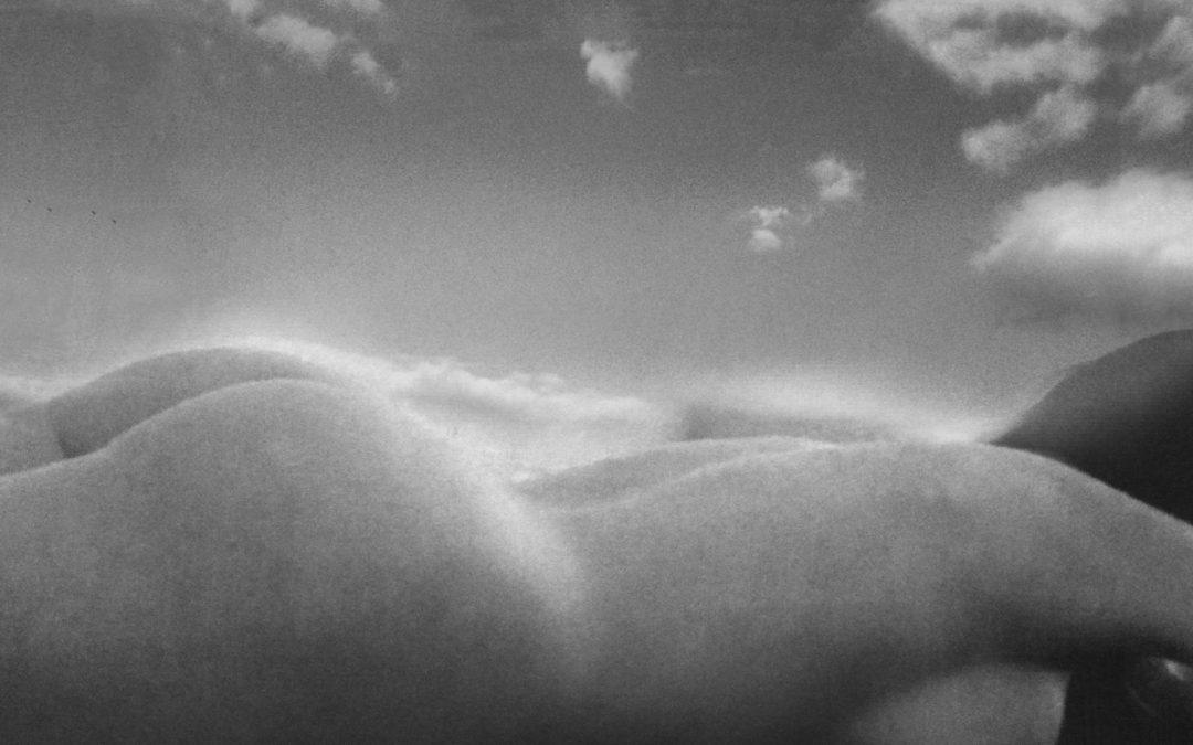 Max T. Frame ~ landscape