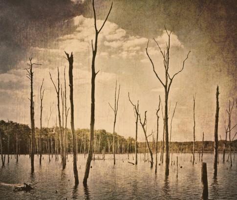 Death by Drowning ~ Carol Ste. Marie