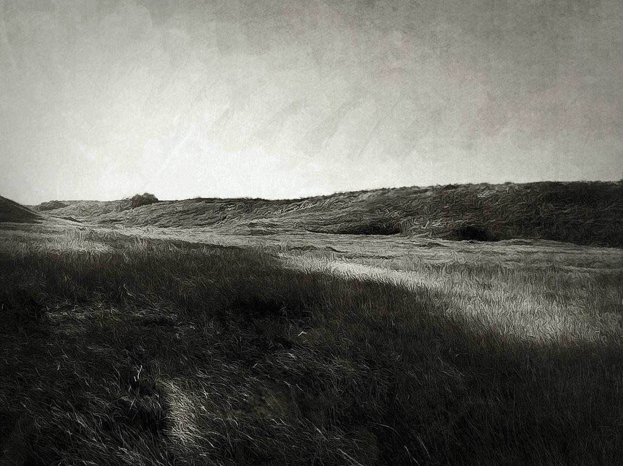 Shane Martin ~ Prairiescape