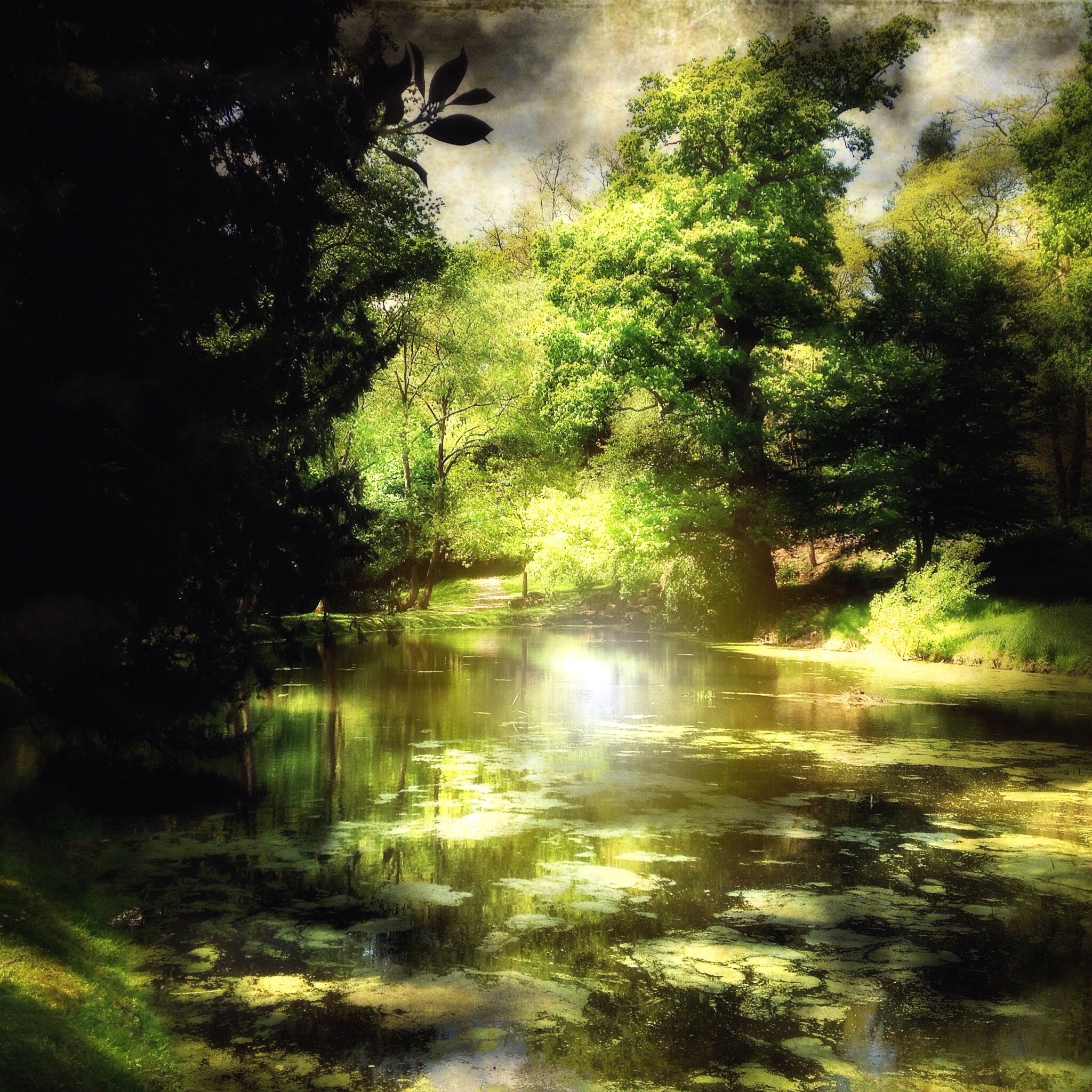 Andrew Chambers ~ Painshill Park