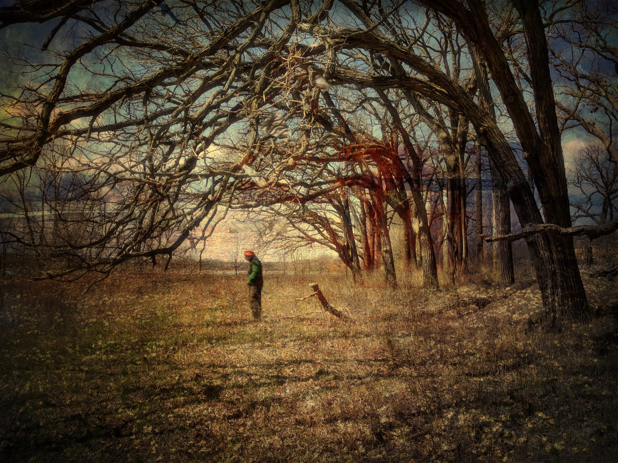 Irene Oleksiuk ~ The trees felt his sorrow and leaned down to embrace him
