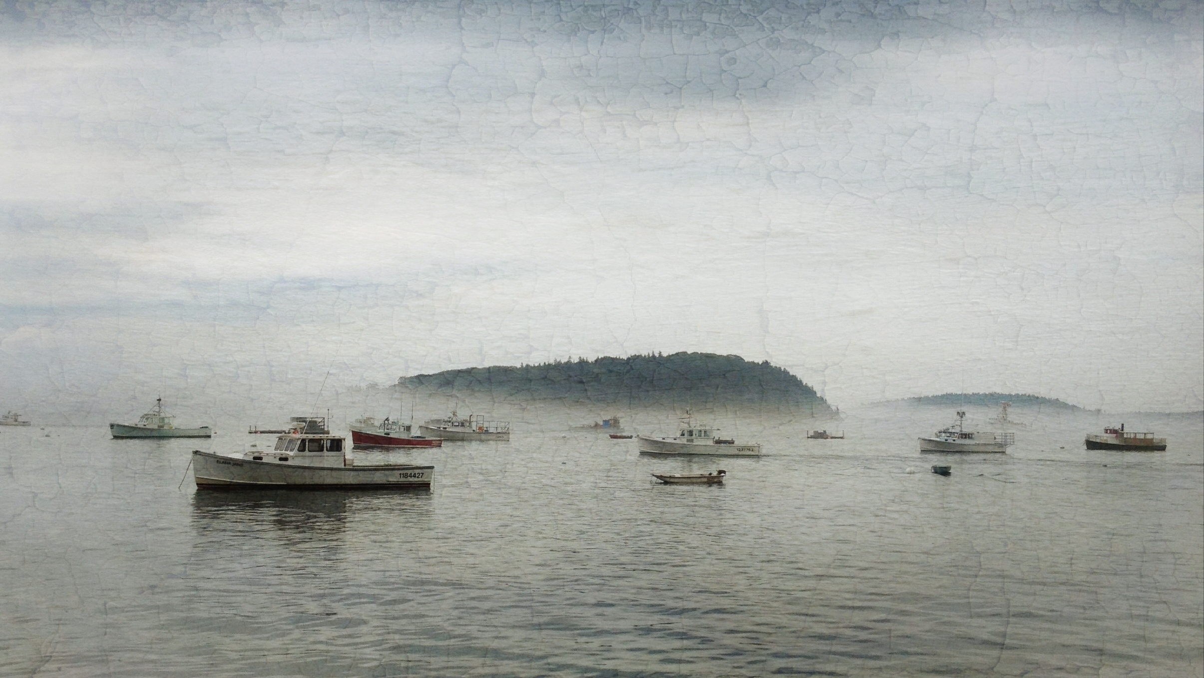 {daily pic} Andrea Koerner ~ Silent Morning
