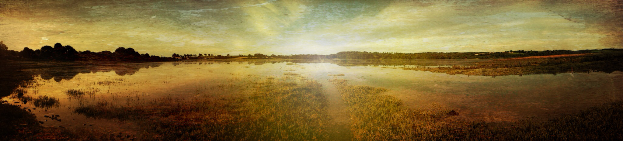 Andrew Chambers ~ Carew Wales