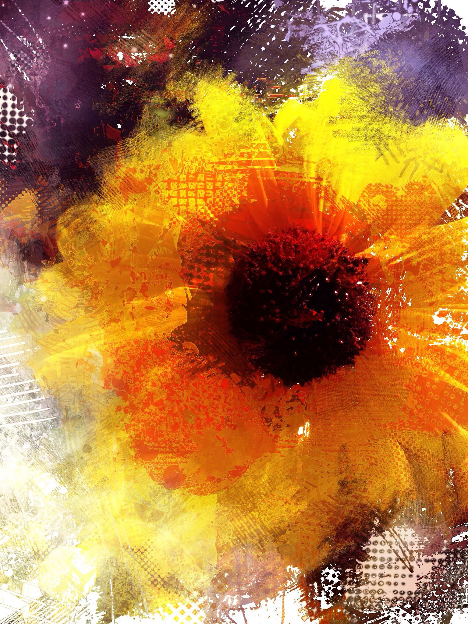 James Metcalf ~ Sunspot