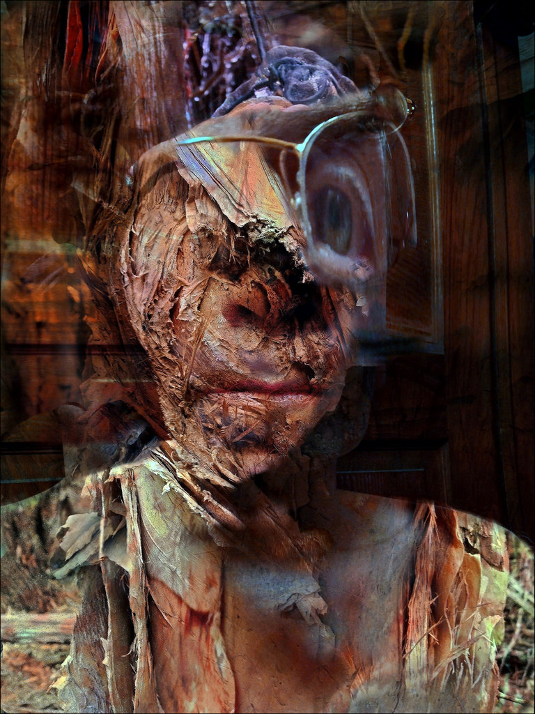 Damian De Souza ~ Advent of the Optic Nerve