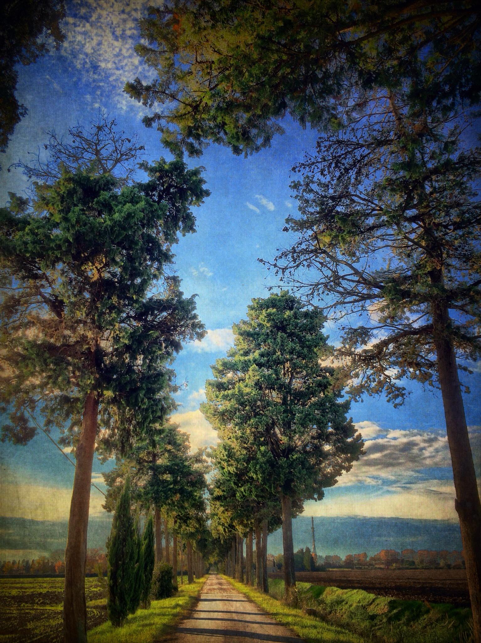 Gianluca Ricoveri ~ Landscape 687