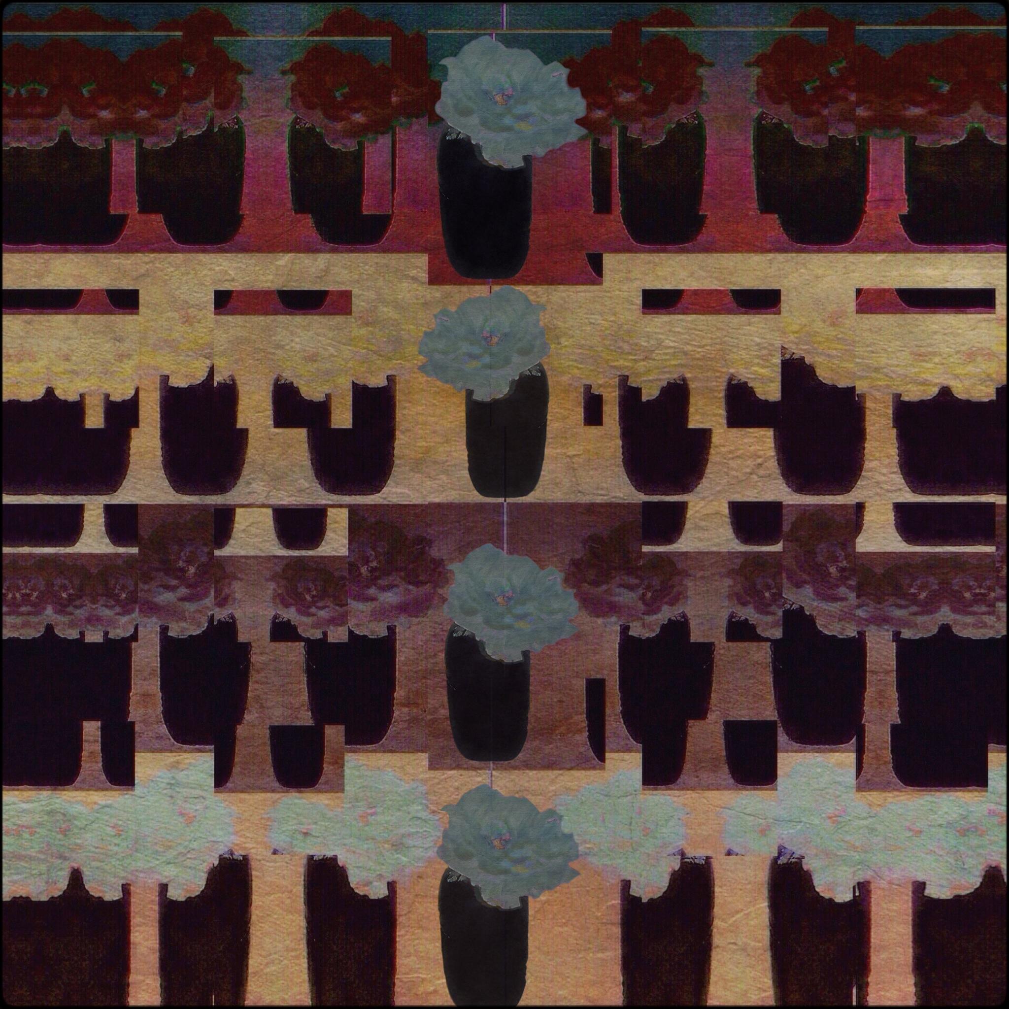 Barbara duBois ~ Rows of Roses