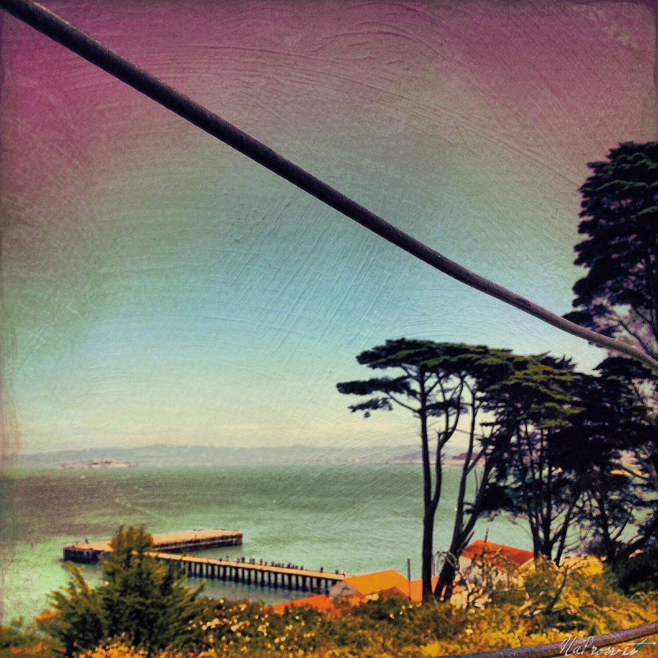 Natali Prosvetova ~ Lovely California 1