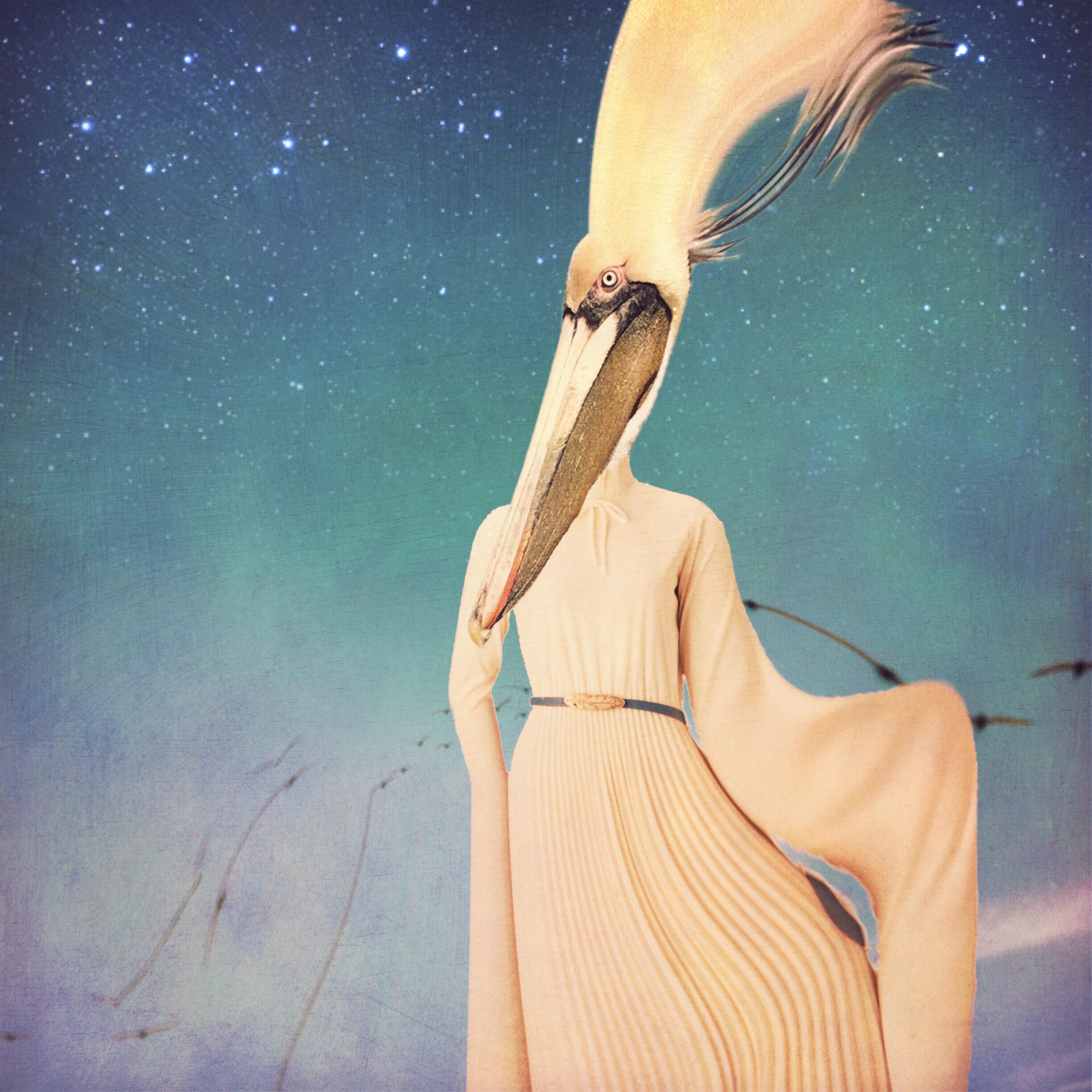 Lorenka Campos ~ I wish I may, I wish I might