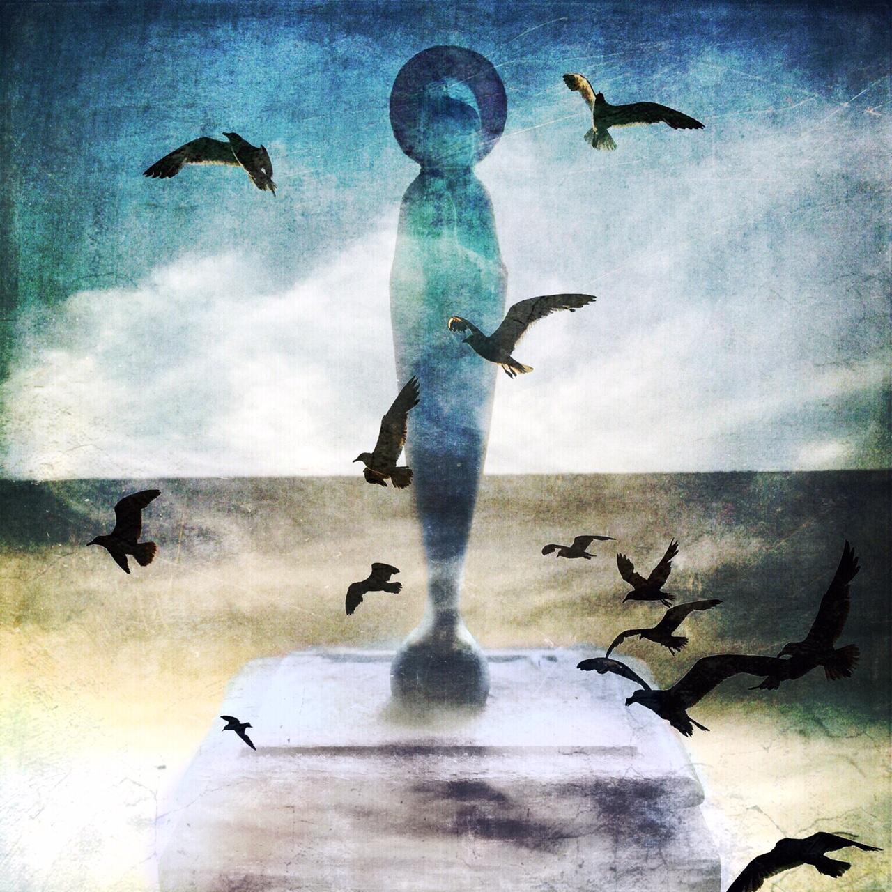 Andrew Lucchesi ~ La Virgen de Galvez