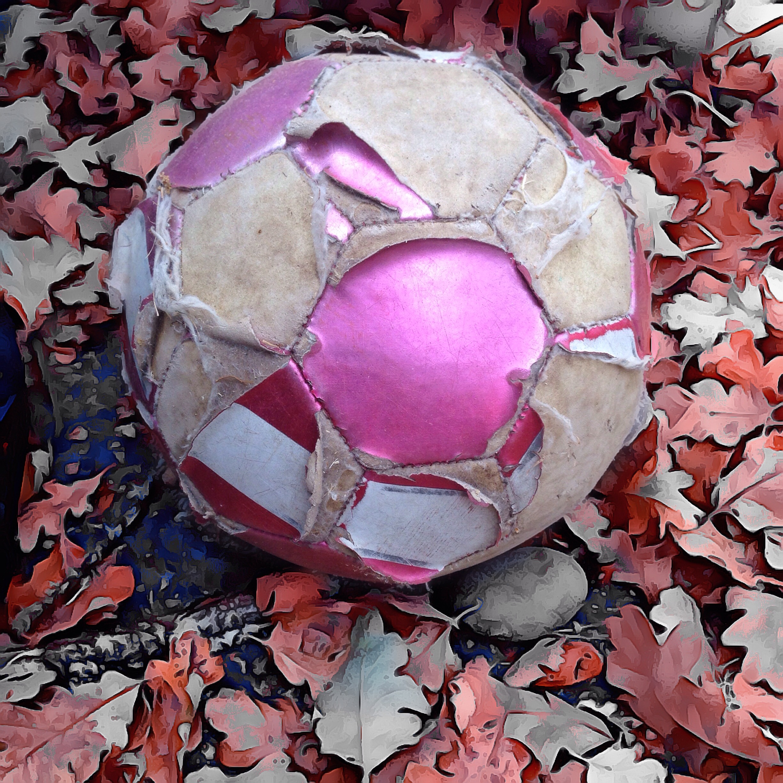 Michael Brunsfeld ~ Poor Soccer Ball Left Outside