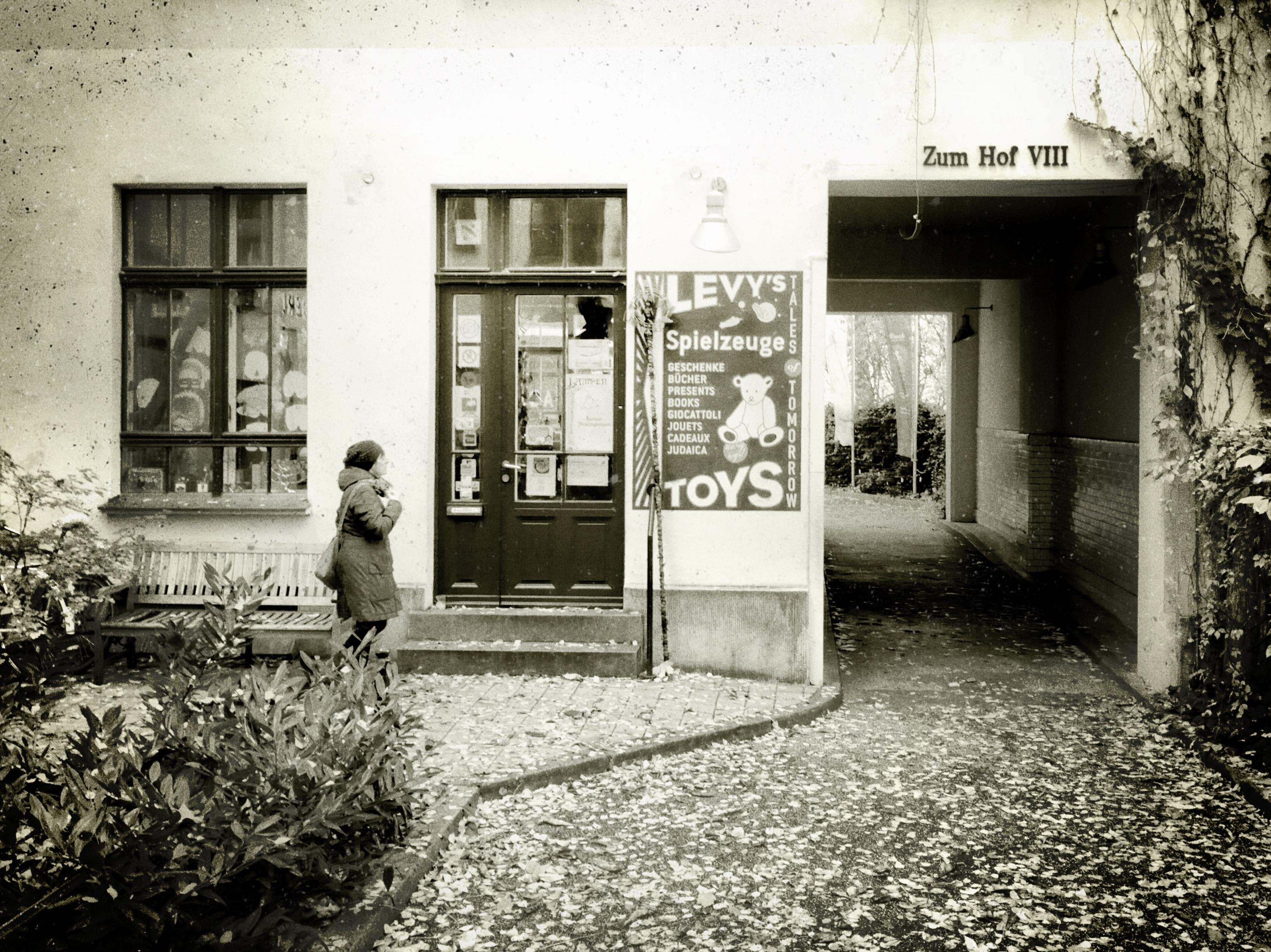 Hans Borghorst ~ Toys