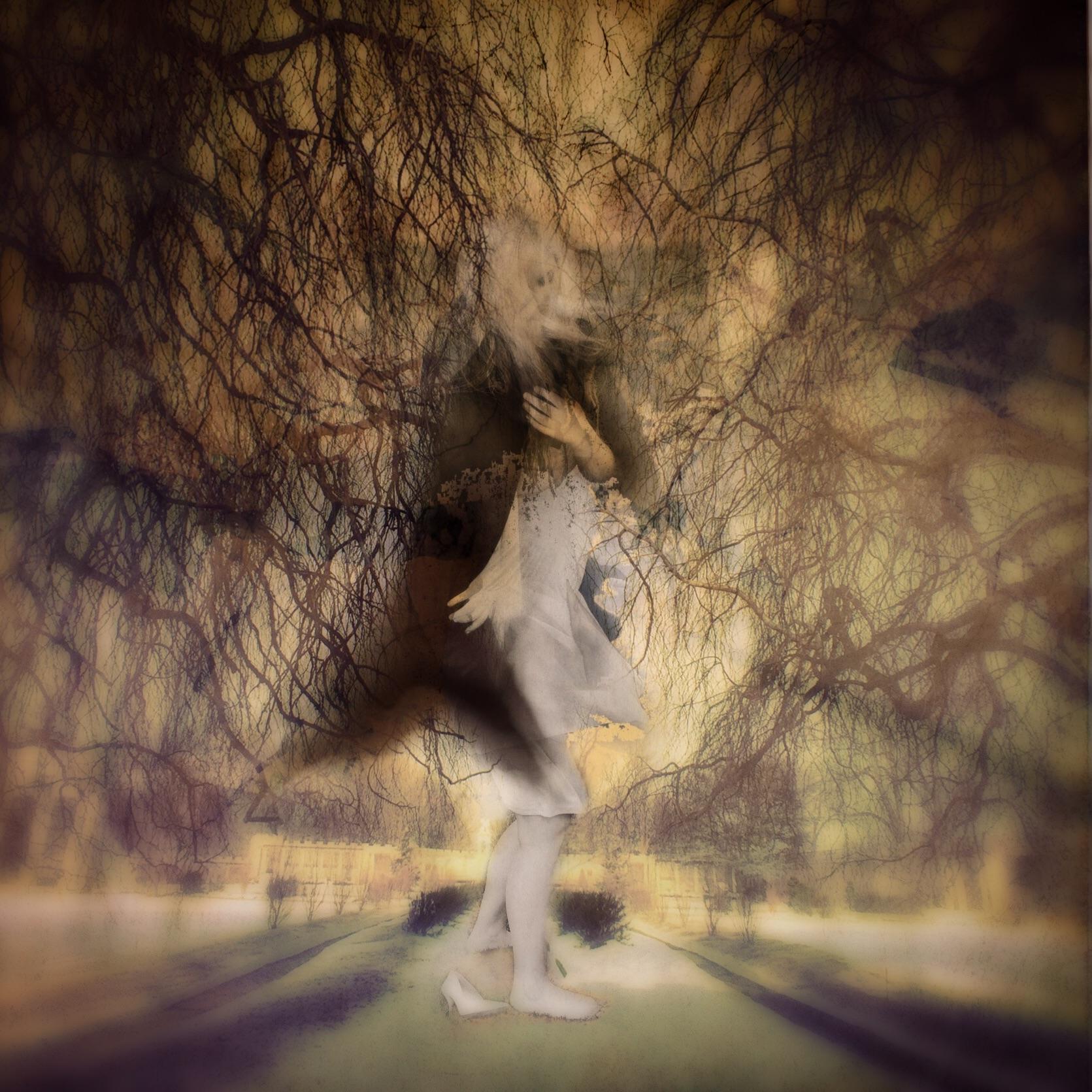 Ilise Harris ~ Untitled