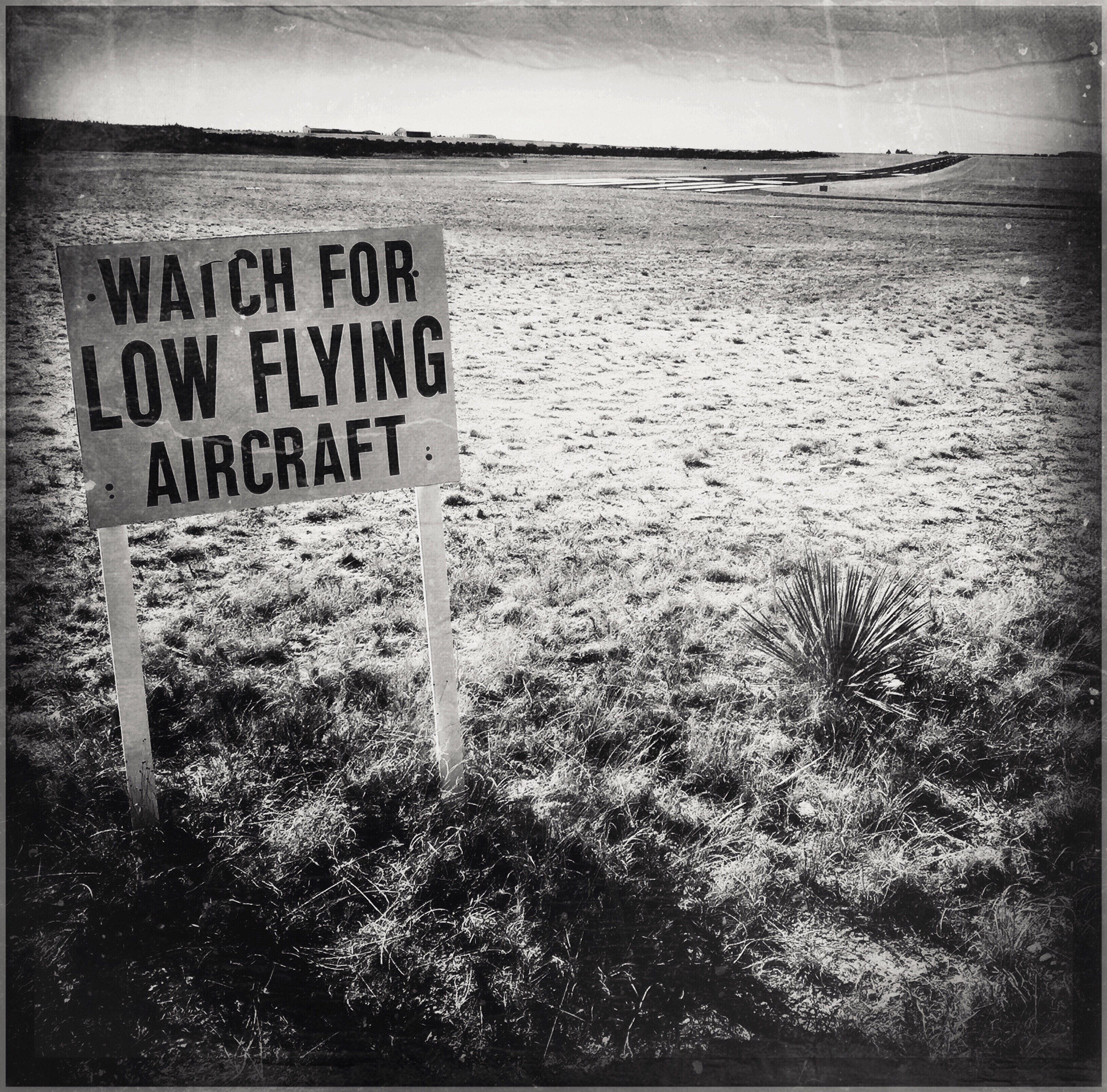 Judy Green ~ Watch For Low Flying Aircraft