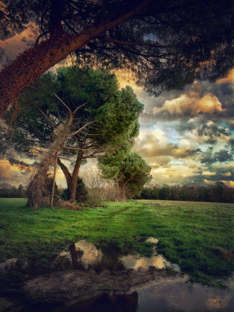 Gianluca Ricoveri ~ Landscape 1126