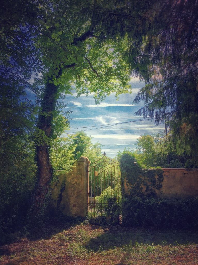 Gianluca Ricoveri ~ Landscape 1131
