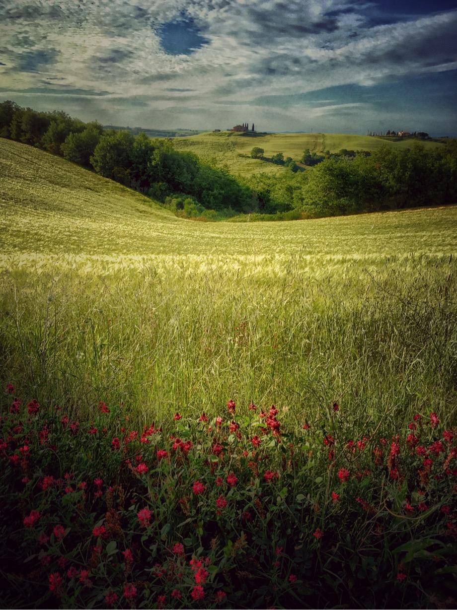 Gianluca Ricoveri ~ Landscape 1134