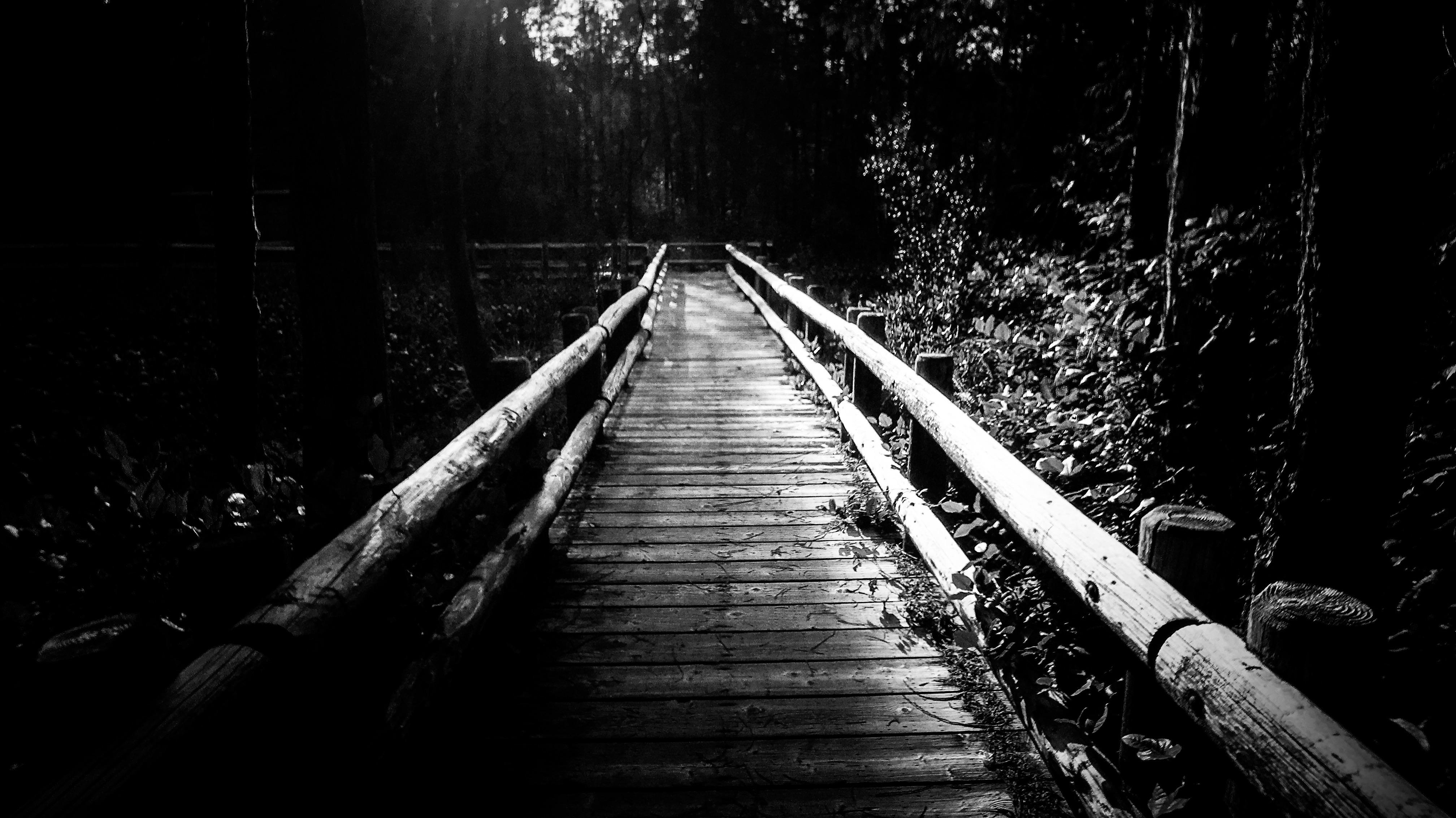 Christopher Swink ~ Diaspora of the Soul  