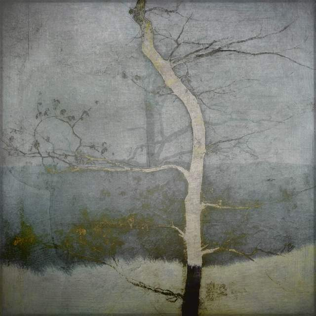 Barbara duBois ~ Have you ever noticed a tree standing naked against the sky, how beautiful it is?