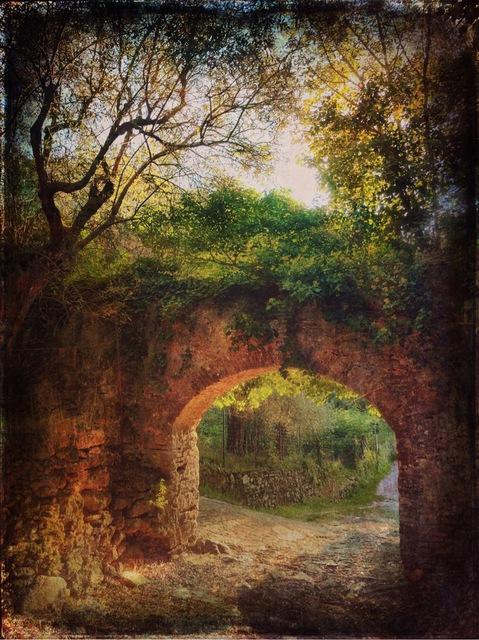 Gianluca Ricoveri ~ Landscape 1216