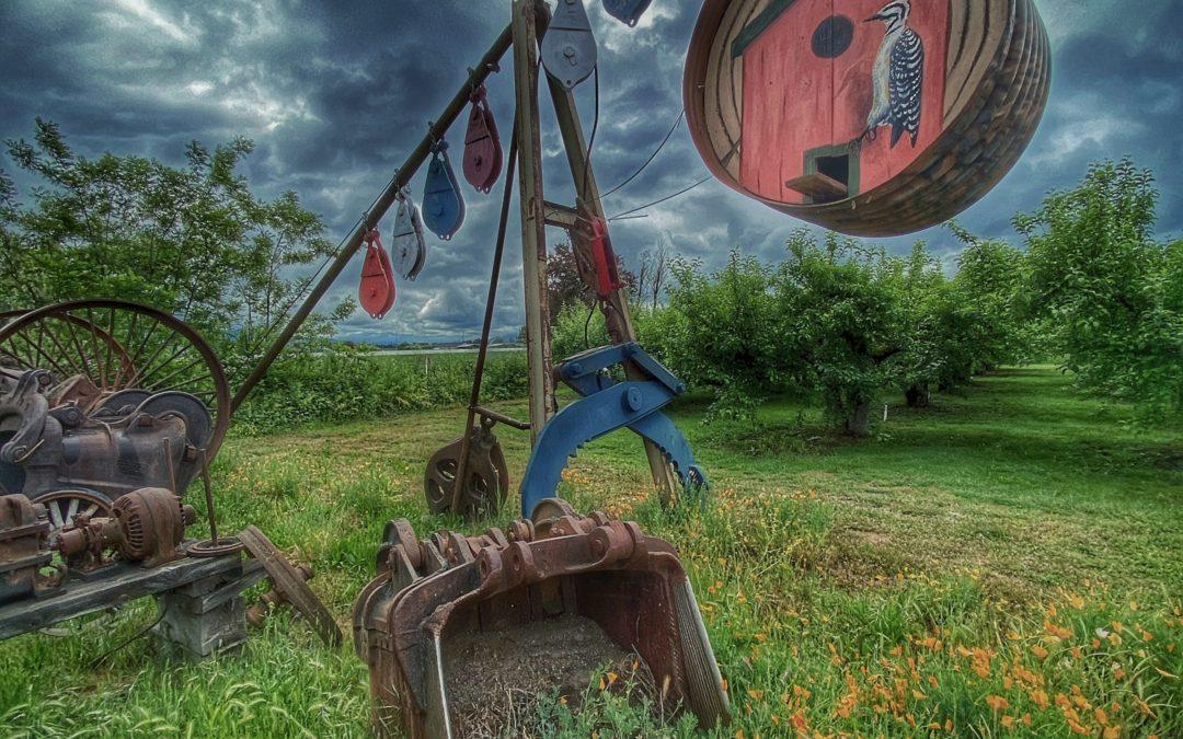 David Scott Leibowitz ~ Country Sculpture 2