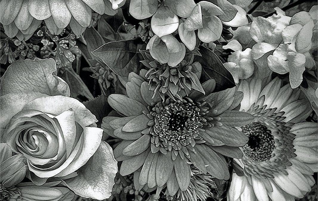 Jan Uiterwijk ~ Your florist loves you (1 of 3) 2
