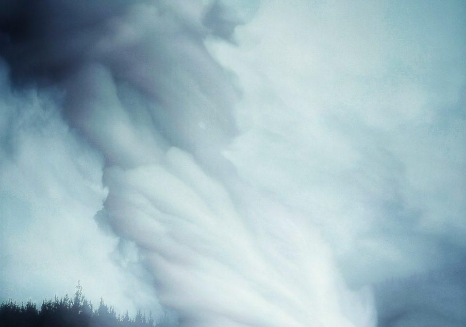 {sunday} Leon Williams ~ Steamed.