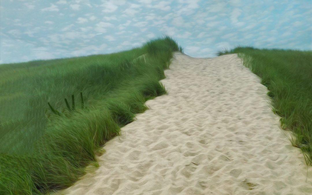 Barbara duBois ~ To the Beach