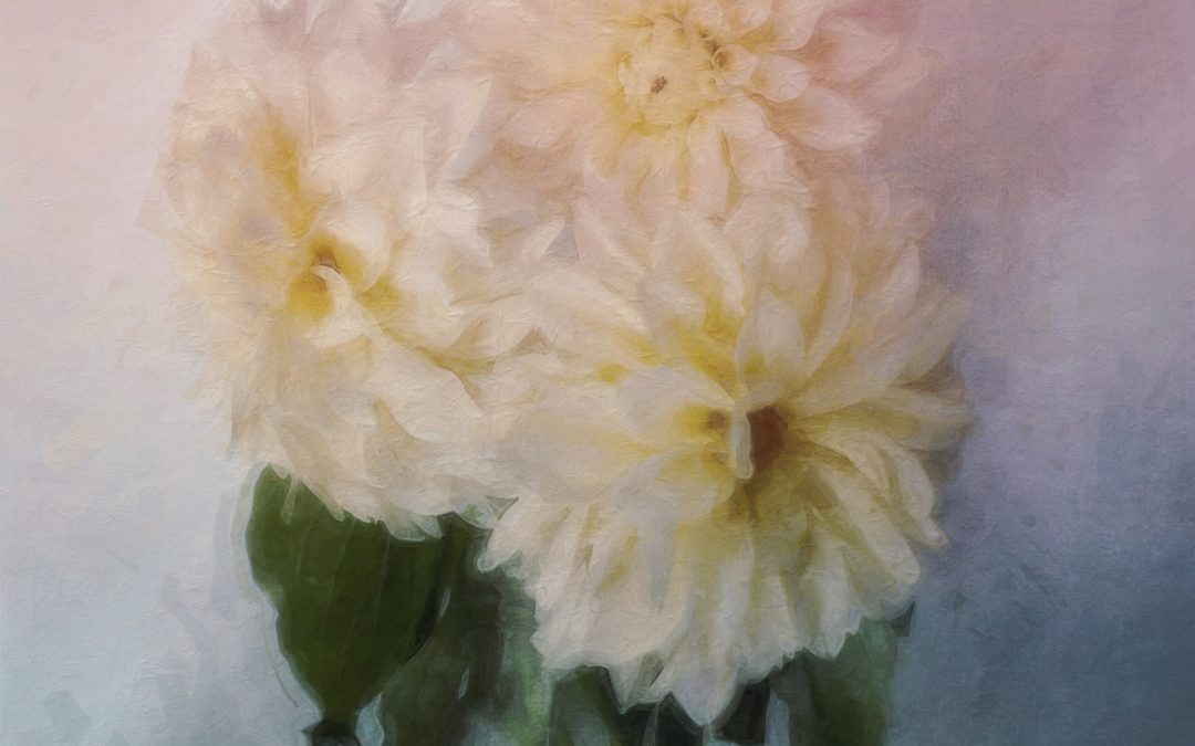 Barbara duBois ~ I paint flowers so they will not die. Frida Kahlo